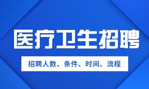 2020年贵州医疗卫生招聘考试网
